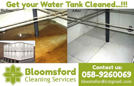Bloomsford Cleaning Services LLC offer