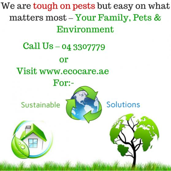 Ecocare Cleaning & Pest Control Services offer
