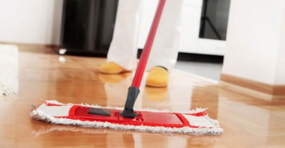 Focus Maid Services offer